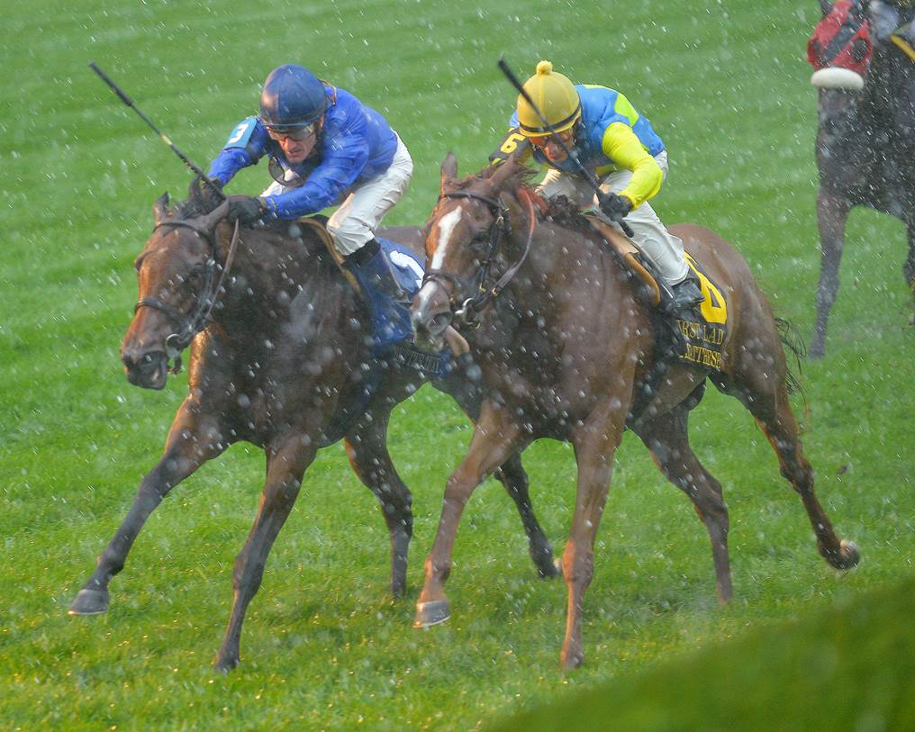 Better Lucky (outside) Dayatthespa (inside) fighting it out in the G1 First Lady at Keeneland.