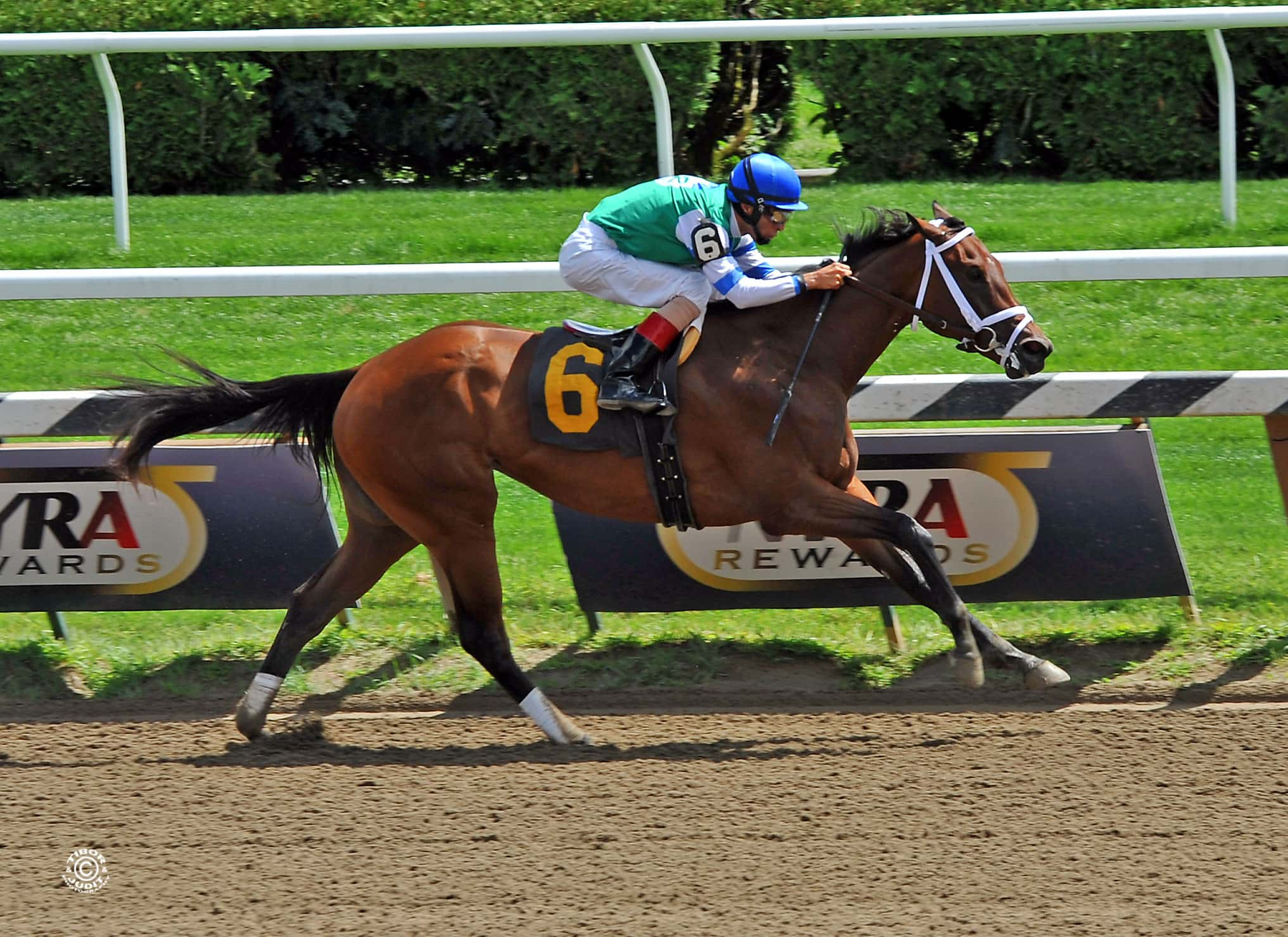 Sweet Whiskey Winning at Saratoga